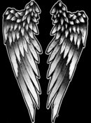 Angel Wings - T17